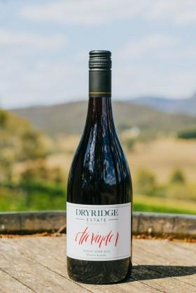 Dry Ridge - Alexander Pinot Noir